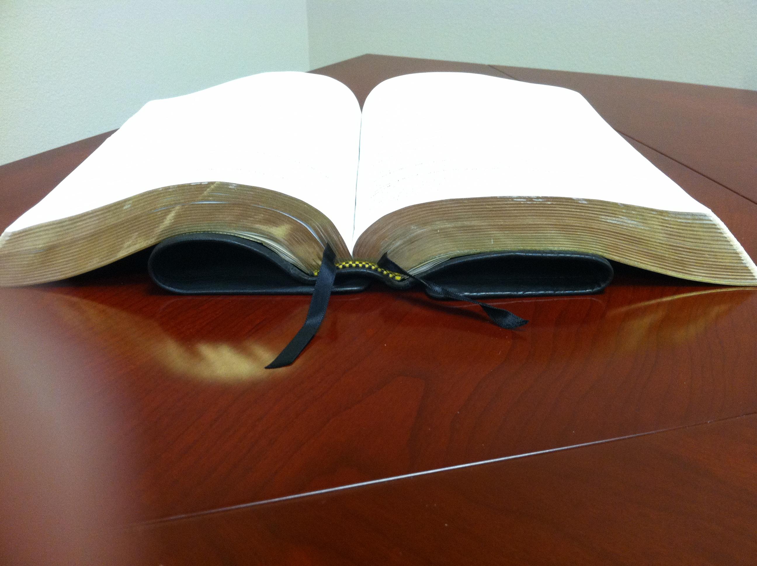 ESV MacArthur Study Bible Black Premium Calfskin | https ...