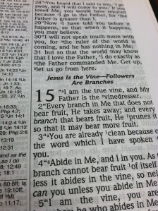 John 15. You can almost read the text on the other side. Bummer.